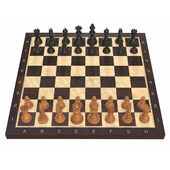 Chess board game pieces