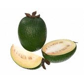 Feijoa tropical fruit whole cut in half slice