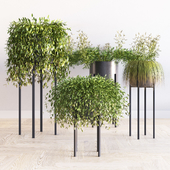 Gabi Planters Set