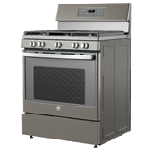 FGas Range with Griddle