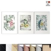 "Poster Set ""Tropical Birds"""