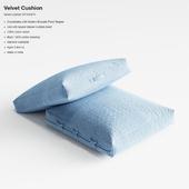 Crate&Barrel Velvet Cushion pillow