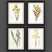 Set of Botanica No.2