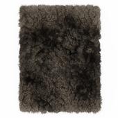 Carpet Shaggi