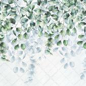 Creativille | Wallpapers | Eucalyptus leaves 4750