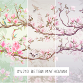 Creativille | Wallpapers | Magnolia branches 4710
