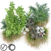 JC Long Planter 2