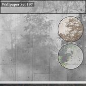 Wallpaper 197