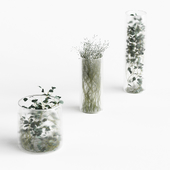 Plants in frosted vases