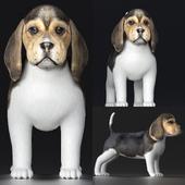 Beagle Puppy V1