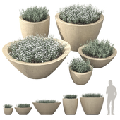 Dune Series Pots