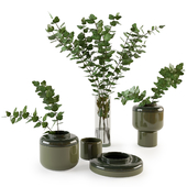 Decorative set with plants