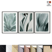 "Poster Set ""Agave Leaves"""
