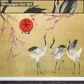 Wallpaper 205