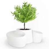 White Pot and Seat Sardana
