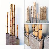 Бамбук в цветных боксах / Bamboo decor color box