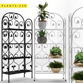 Plants 239