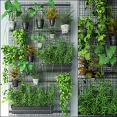 JC Wall Grid Plant Pot 4