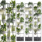 Vertical gardening. 31