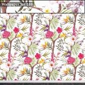 Wallpaper 210