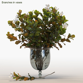 Branches in vases # 5