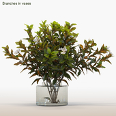 Branches in vases # 6