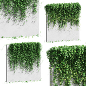 Стена с листьями винограда