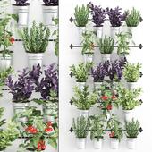 Vertical gardening. 33
