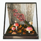 Terrarium with snails