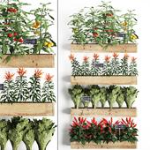 Vertical gardening. 45