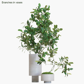 Branches in vases #13