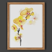 Picture frame 00025-59