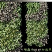 Vertical garden 20