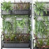 JC Wall Grid Plant Pot 5
