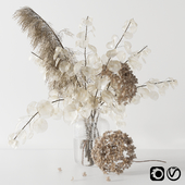 Bouquet with lunaria, pampas grass and hydragea