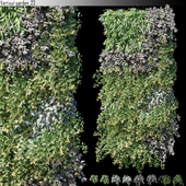Vertical garden_23