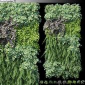 Vertical garden_25