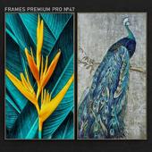 Frames Premium PRO No. 47