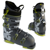 Ski shoes