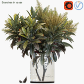 Branches in vases 25