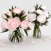 Букеты из белых и розовых пионов.