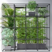 JC Wall Grid Plants Pot 7