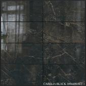 Yurtbay Seramik Carelia Black 300x600 Set 1