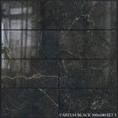 Yurtbay Seramik Carelia Black 300x600 Set 3