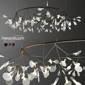 Chandelier Moooi Heracleum Big O Small