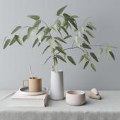 decorative set with eucalyptus branch