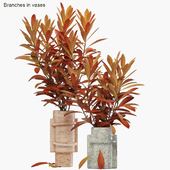 Branches in vases 27 : Autumn flame