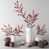 Branches with red berries in white vases