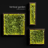 Vertical garden. Moss modules 4