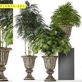 plants 261